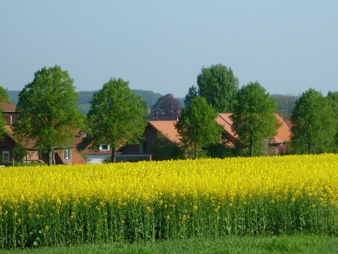 Blick auf einen Hof in Alferde